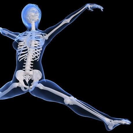bones_free